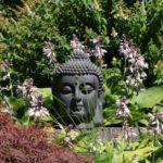 boeddha beelden kopen bij thuis in de tuin