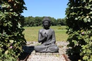 ThuisindeTuin.nl tuinbeelden boeddha beeld groot