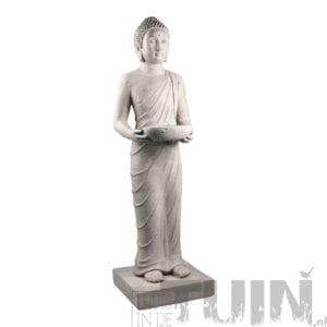 Boeddha beeld staand