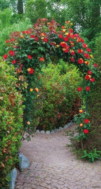 1900242167-buitenschilderij-rozenboog-pb-collection-70x130