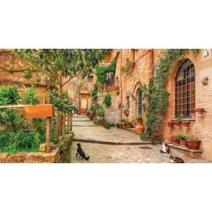 1900262167-buitenschilderij-steeg-met-katten-pb-collection-70x130