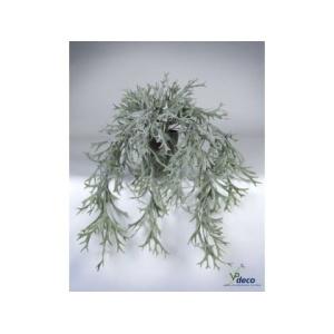 06307p-hertshoorn-hangplant-in-pot