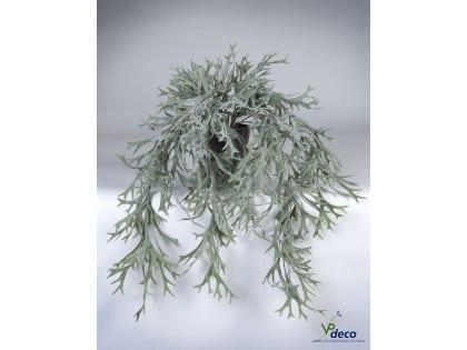 06307pp-hertshoorn-hangplant-in-pot