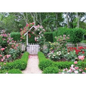 1800386166-buitenschilderij-rose-garden-collection-70x130