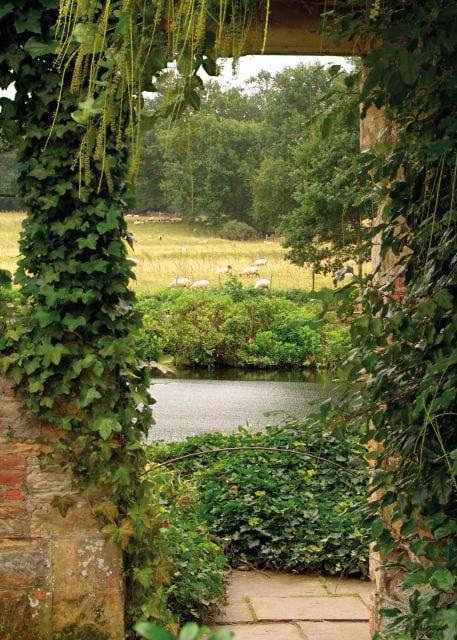 1800389166-buitenschilderij-garden-view-ivy-collection-70x130