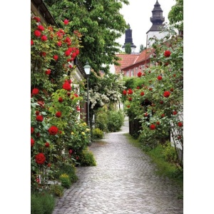 1800392166-buitenschilderij-alley-roses-collection-70x130