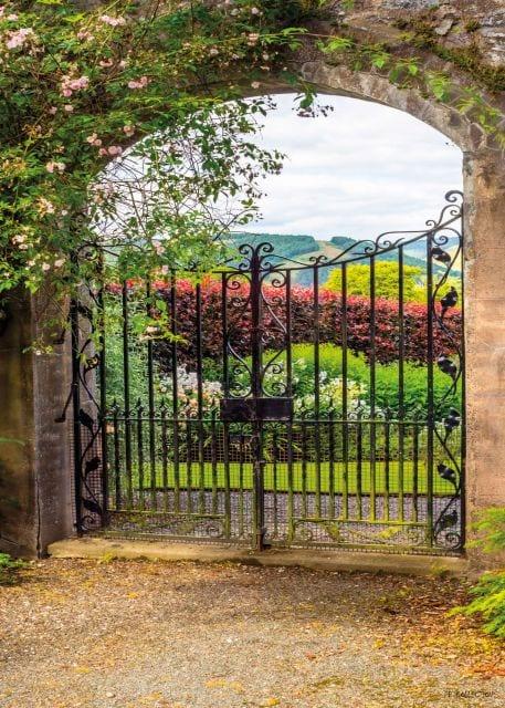 1800394166-buitenschilderij-garden-view-fence-collection-70x130