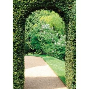 1800400166-buitenschilderij-garden-view-path-70x130