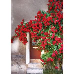 1800404166_4-buitenschilderij-door-with-red-flowers-70x130