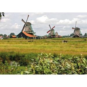 1800414166-buitenschilderij-windmills-collection70x130