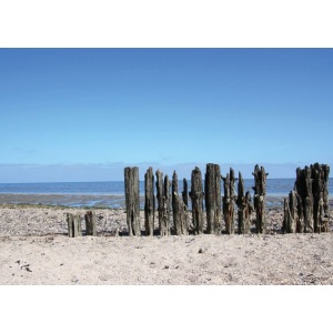 1800419166-buitenschilderij-beach-wooden-poles-collection70x130