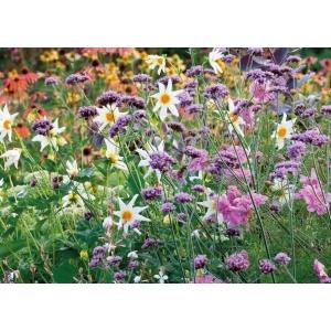 1800423166-buitenschilderij-wild-flowers-collection70x130