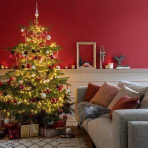 Nordmann kerstboom thuisbezorgd - thuisindetuin.nl 02
