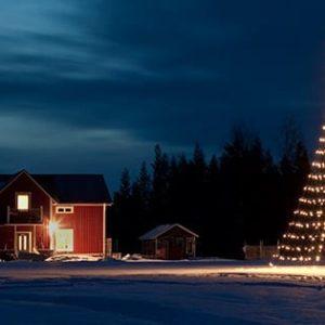 kerst in de tuin met een kerstboom voor buiten!