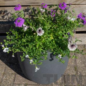 Een vrolijke winterse tuin met behulp van onze bloembakken!